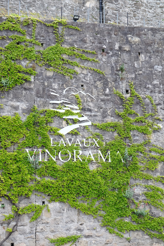 Lavaux Vinorama | © individualicious