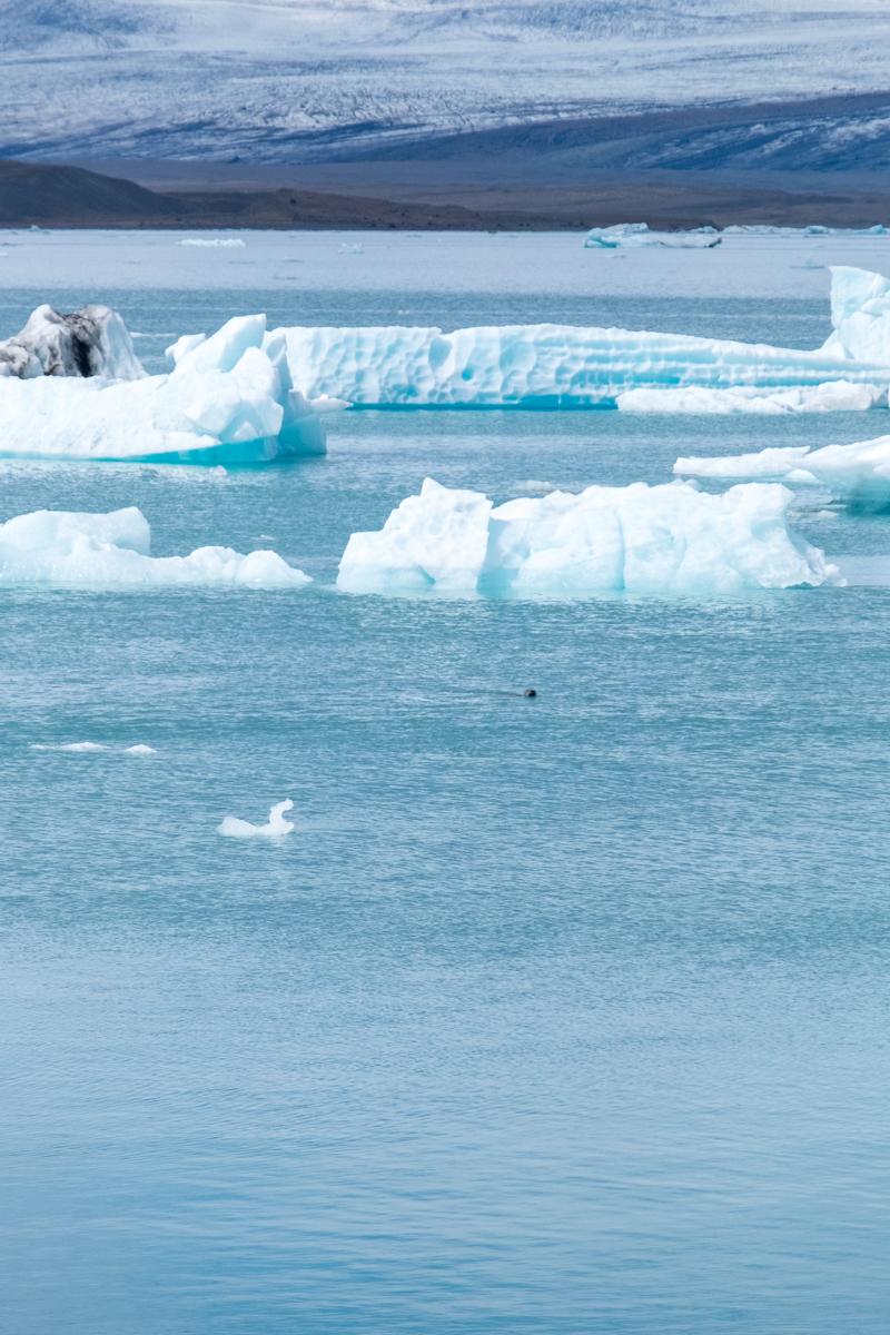 Jökulsárlón Glacier Lagoon | © individualicious