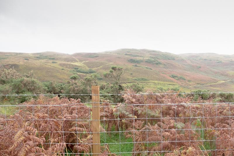 Isle of Skye   © individualicious