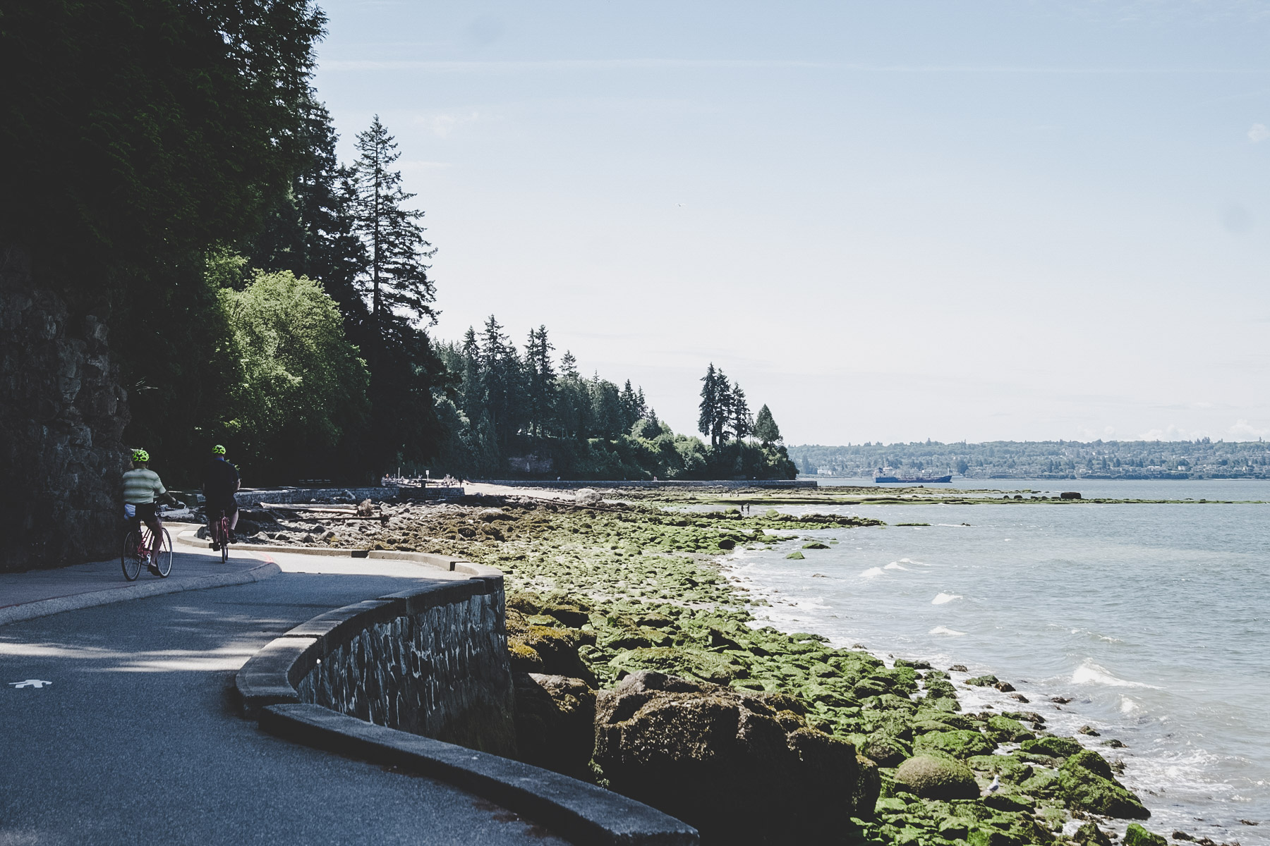 Stanley Park, Vancouver | © individualicious